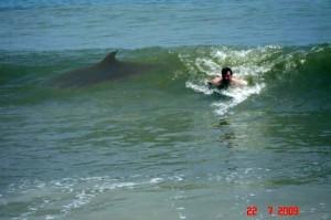 Shark!!!!!
