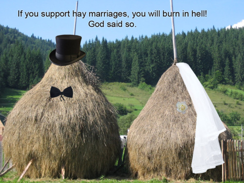 If you support hay marriages, you will burn in hell! God said so.