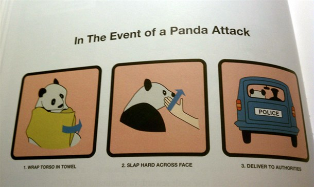 In The Event of a Panda Attack