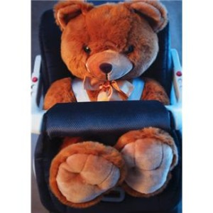 teddy bear in carseat