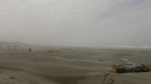 The Fog Mystery