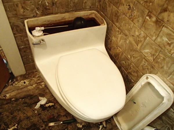 "The ""new"" toilet, along with the old flooring. If it's not the sitting, it's the footing."