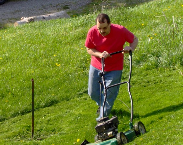 The Fall of The Conservative Lawn Mower