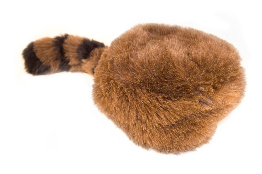 Coonskin cap   davy crockett hat - Xuc coin dozer endoscopy 288fd351f527