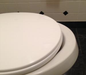 Toilet Underbite: Bad Holiday Decorating