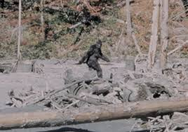 Investing in Bigfoot the Wall Street Way?