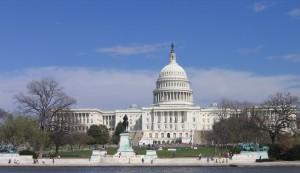Faculty Senate Fiasco: A Political Primer