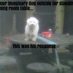 imaginarydog