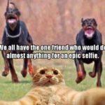 onefriend