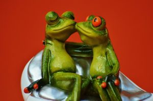 frogs-1250895_640