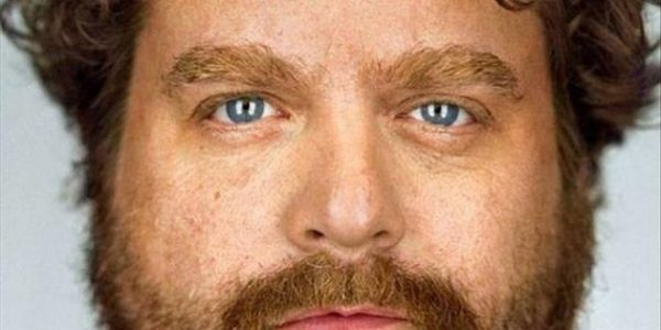 There's nothing we can't learn from Zach Galifianakis…