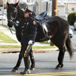 Image result for riderless horse