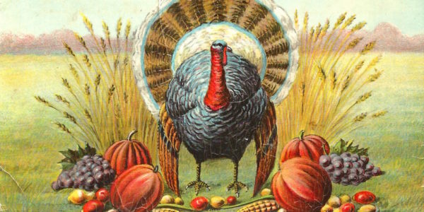 Turkey Bits from the 'burbs