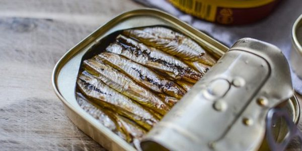Come For The Great Gatsby, Stay For The Sardines