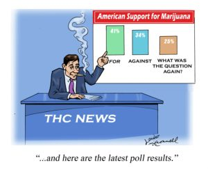 Cartoon: American support for marijuana