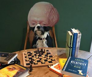 <strong>Measuring the intellect of some dogs is easier than others.</strong>